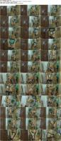 113985848_lacynylons_g551_s.jpg
