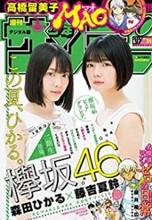 Weekly Shonen Sunday 2019-34 (週刊少年サンデー 2019年34号)
