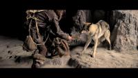 Alfa / Alpha (2018) MULTI.Theatrical.Cut.1080p.BluRay.Remux.AVC.DTS-HD.MA.5.1-BETON / POLSKI LEKTOR, DUBBING i NAPISY