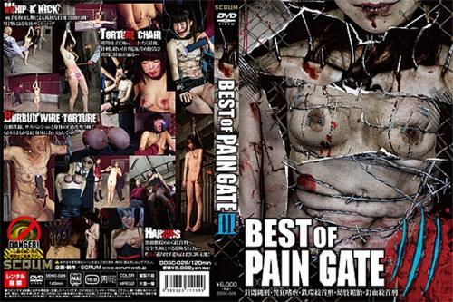 [DDSC-026] BEST OF PAIN GATE 3 2017/06/20 120分 スクラム スクラム
